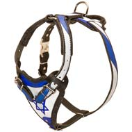 'Israeli Flag' Painted Leather Siberian Husky Harness