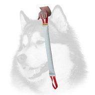 Training Fire Hose Siberian Husky Bite Tug