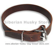 Leather Buckle Dog Collar for Siberian Husky