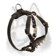 Leather Siberian Husky Harness with Spiked Chest Plate