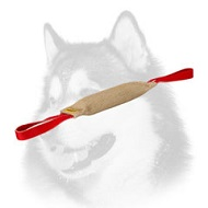 Siberian Husky Training Tug Made of Jute with Handle
