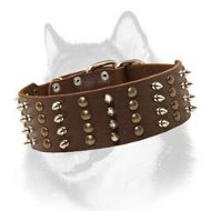 Spiked and Studded Latigo Leather Siberian Husky Collar