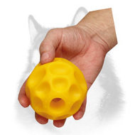 Tetraflex Dog Chew Toy - Treats Dispenser for Siberian Husky - Medium