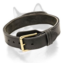 Leather dog collar with handle for Husky