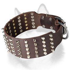 Fashion leather dog collar for Siberian Husky for walking