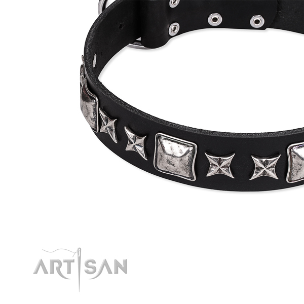 Full grain leather dog collar with embellishments for daily walking