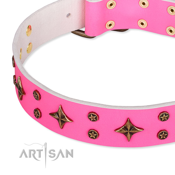 Full grain natural leather dog collar with significant embellishments