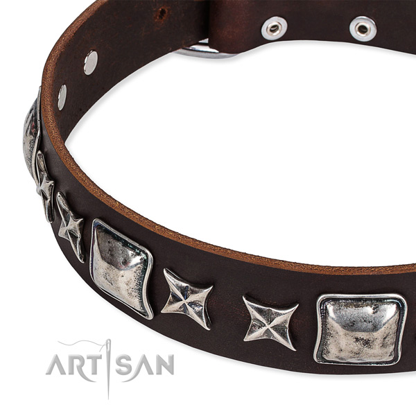 Natural genuine leather dog collar with embellishments for daily use