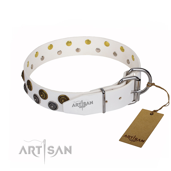 Stylish walking full grain natural leather collar with embellishments for your canine