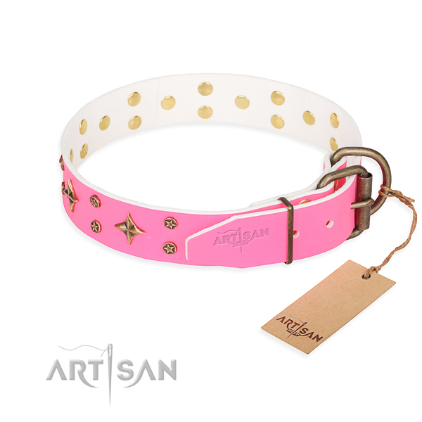 Daily use full grain natural leather collar with embellishments for your dog
