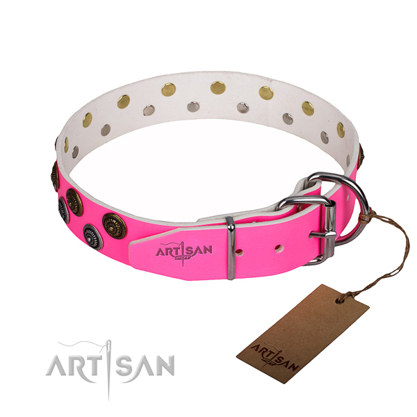 Walking leather collar with embellishments for your doggie