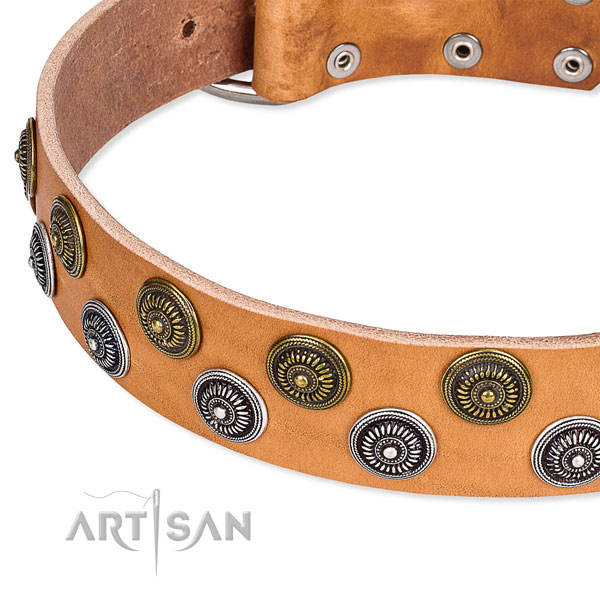 Genuine leather dog collar with unique adornments