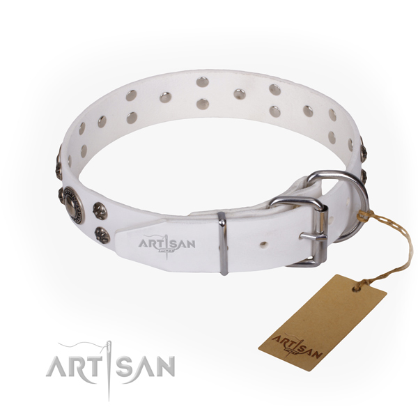 Walking genuine leather collar with adornments for your doggie