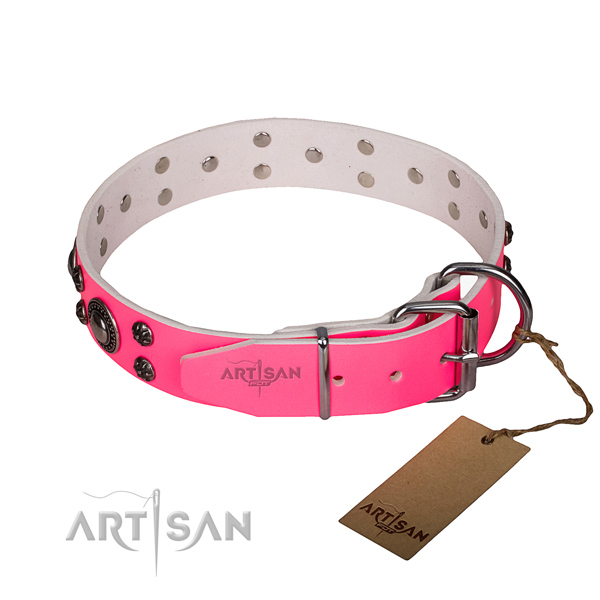 Walking leather collar with corrosion resistant buckle and D-ring