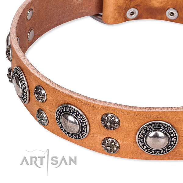 Handy use genuine leather collar with reliable buckle and D-ring