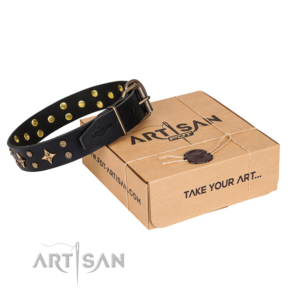 Decorated genuine leather dog collar for stylish walks