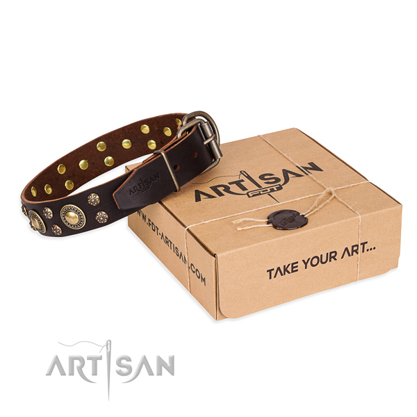 Top notch full grain leather dog collar for walking