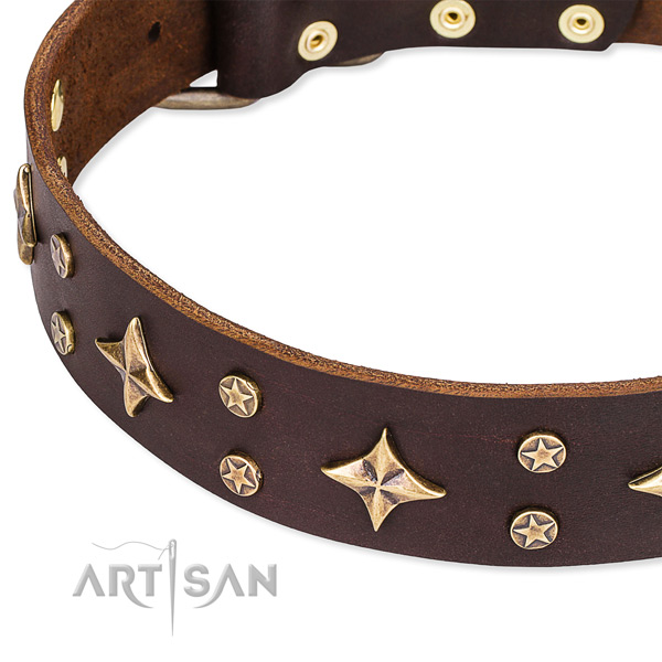 Full grain genuine leather dog collar with trendy adornments