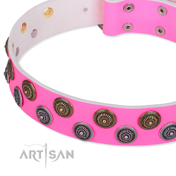 Full grain leather dog collar with amazing decorations