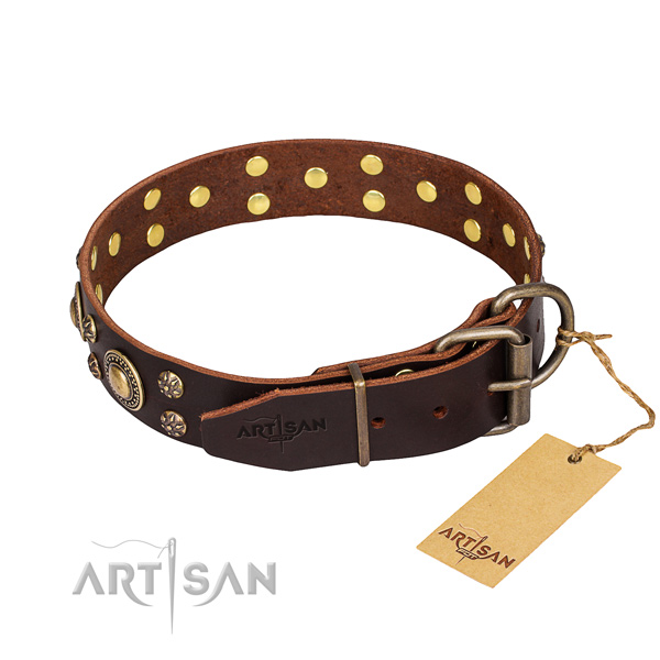 Daily walking full grain natural leather collar with studs for your canine