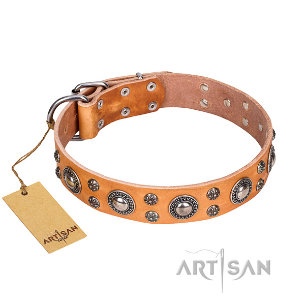 Unusual full grain genuine leather dog collar for walking