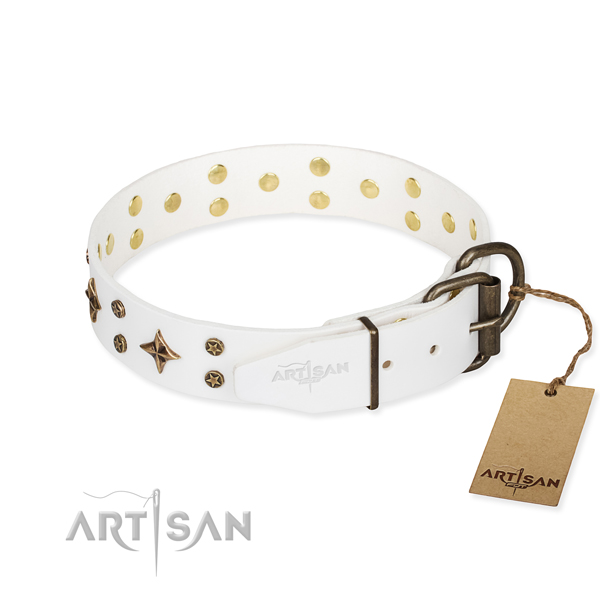 Everyday use genuine leather collar with embellishments for your dog