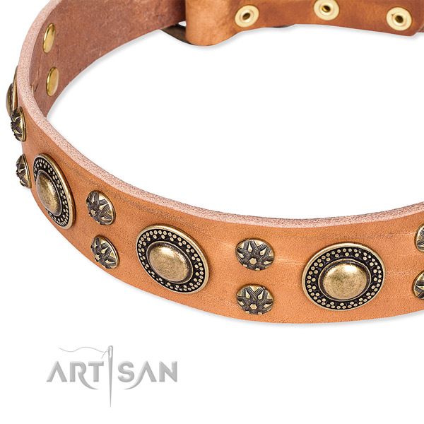 Leather dog collar with significant adornments