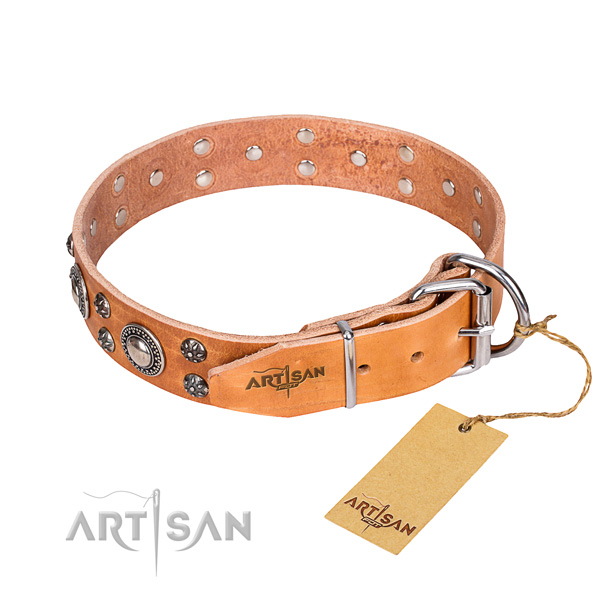 Handy use leather collar with adornments for your dog