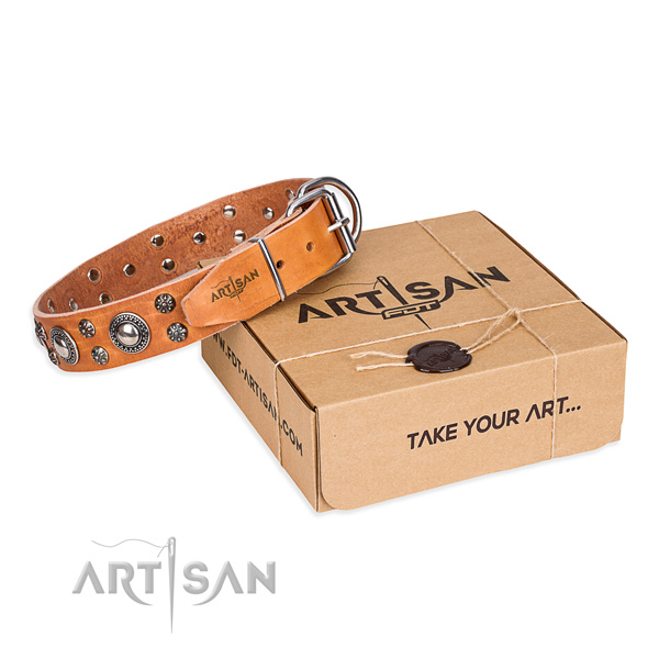 Stylish design genuine leather dog collar for walking in style