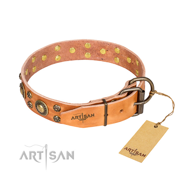 Everyday use full grain natural leather collar with embellishments for your four-legged friend