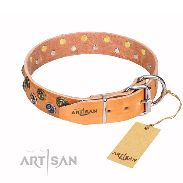 Everyday walking natural genuine leather collar with embellishments for your doggie