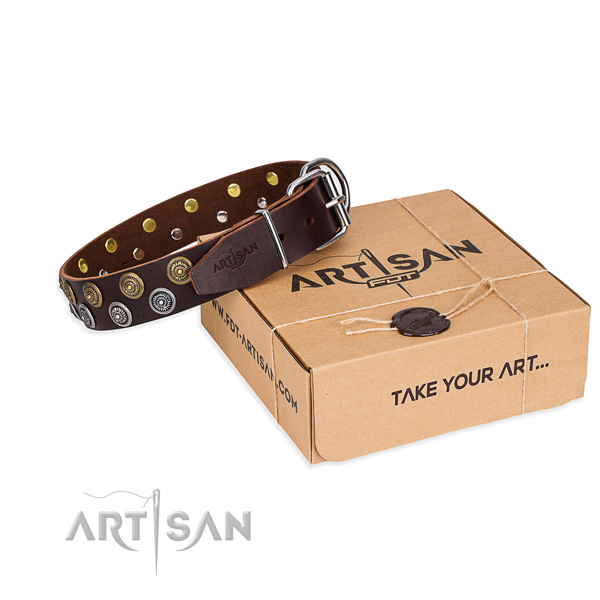 Leather dog collar with studs for everyday use