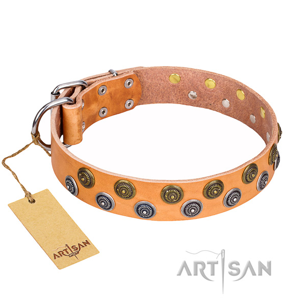 Trendy full grain genuine leather dog collar for handy use