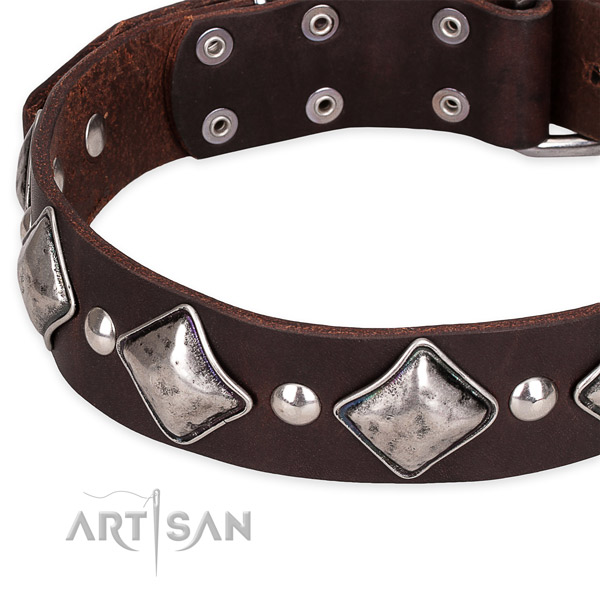 Snugly fitted leather dog collar with extra strong non-rusting buckle and D-ring