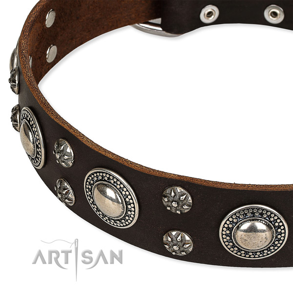Easy to adjust leather dog collar with almost unbreakable rust-proof set of hardware