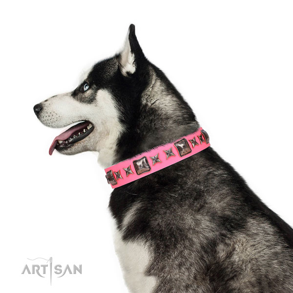 Exquisite adorned leather dog collar for walking