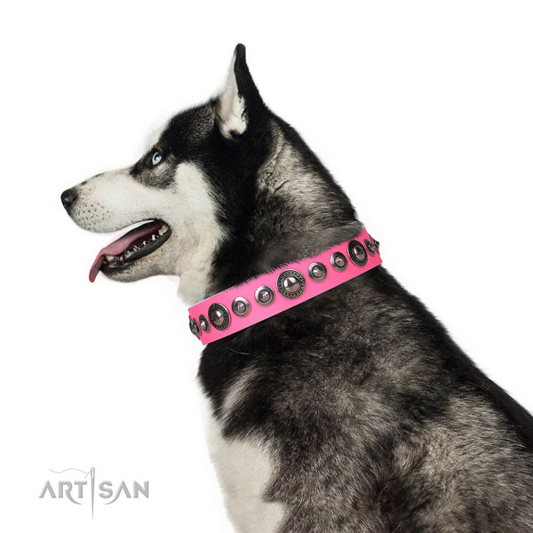 Unique embellished genuine leather dog collar for everyday use