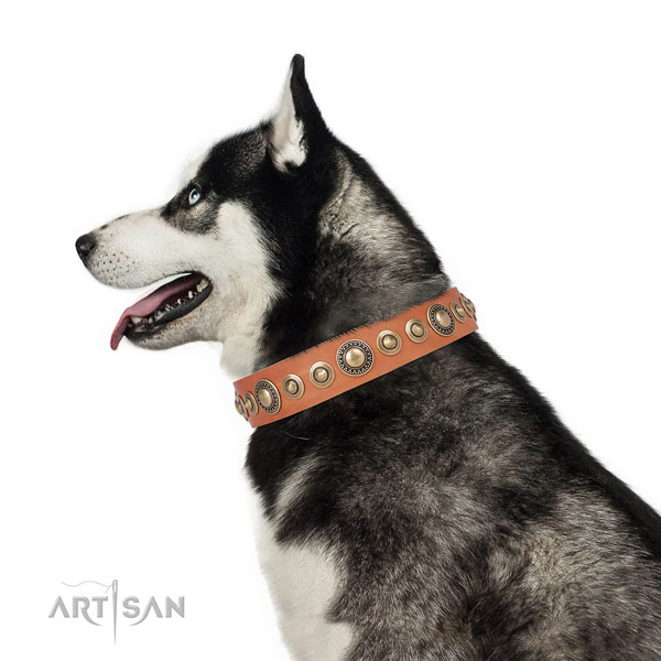 Corrosion proof buckle and D-ring on genuine leather dog collar for stylish walks