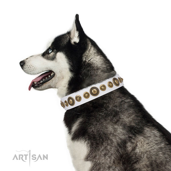 Corrosion resistant buckle and D-ring on leather dog collar for stylish walking