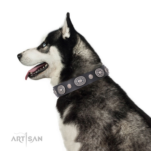 Corrosion proof buckle and D-ring on full grain leather dog collar for daily use