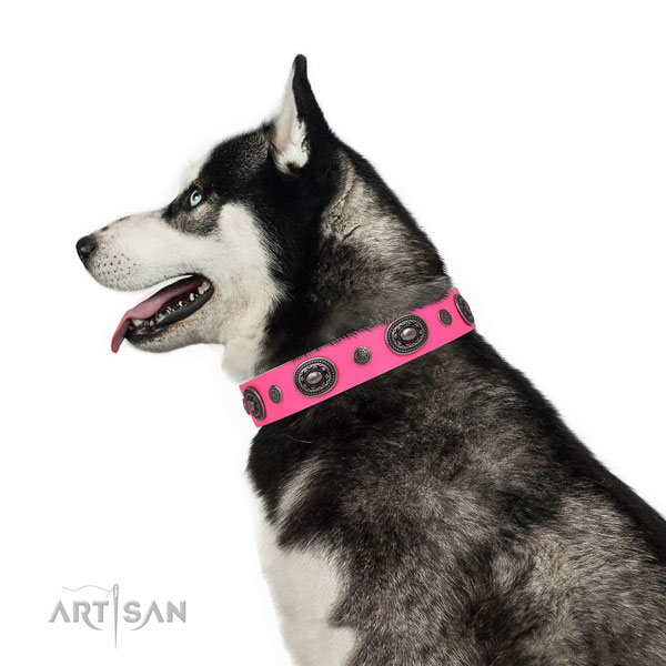 Full grain leather dog collar with strong buckle and D-ring for daily use