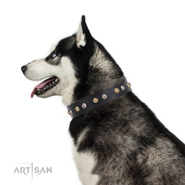Genuine leather dog collar with reliable buckle and D-ring for comfy wearing