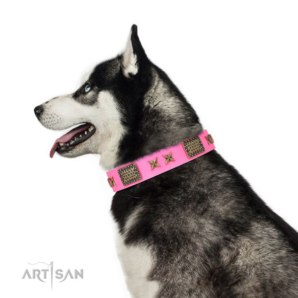 Fashionable embellishments on handy use leather dog collar