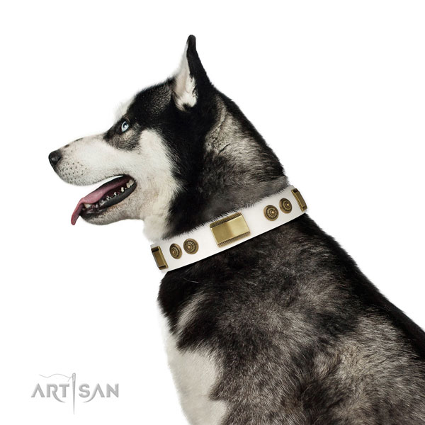 Quality basic training dog collar of natural leather