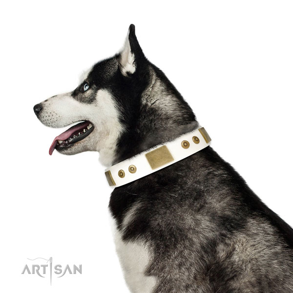 High quality comfy wearing dog collar of genuine leather