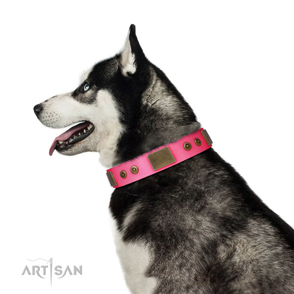 Designer genuine leather collar for your attractive canine