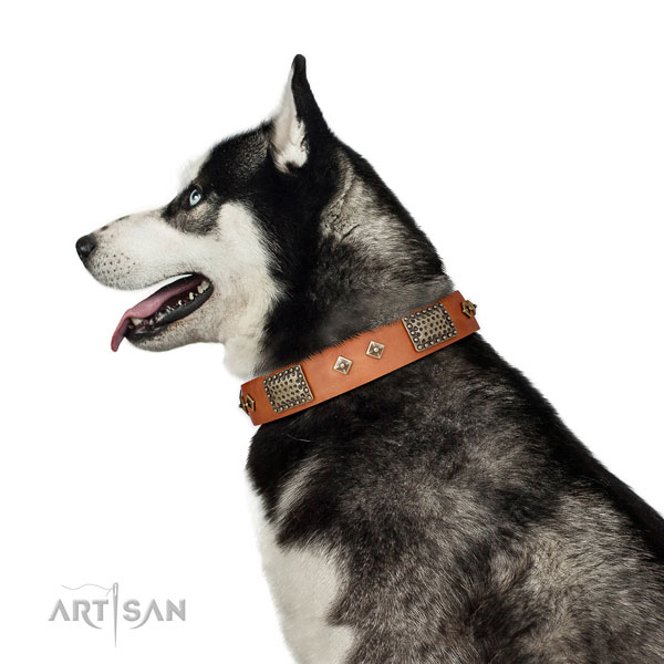Comfortable wearing dog collar of genuine leather with inimitable decorations