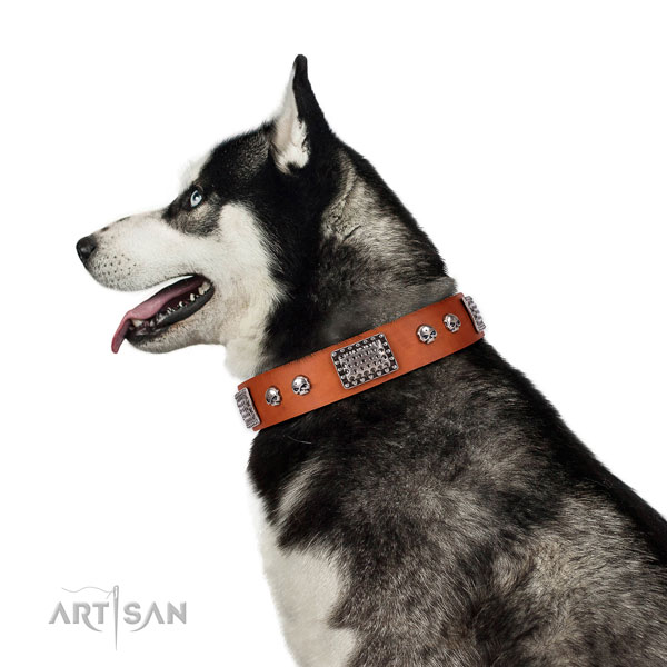 Impressive full grain genuine leather collar for your lovely canine