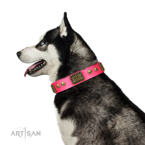 Rust-proof traditional buckle on full grain leather dog collar for walking