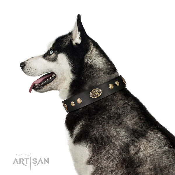 Corrosion resistant hardware on natural leather dog collar for fancy walking